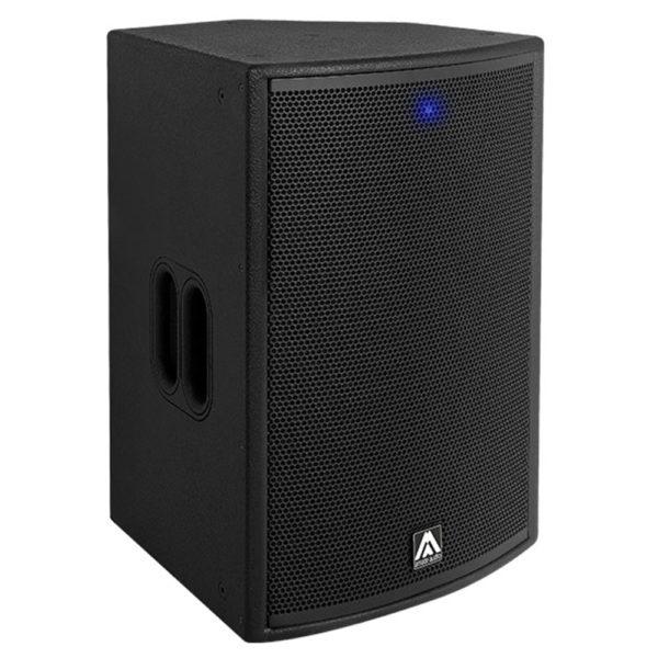 """High Power 12"""" PA Speaker"""