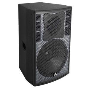 """Amate Disco 15"""" Speaker"""