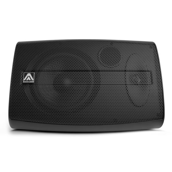 8 inch Passive Monitor Speaker